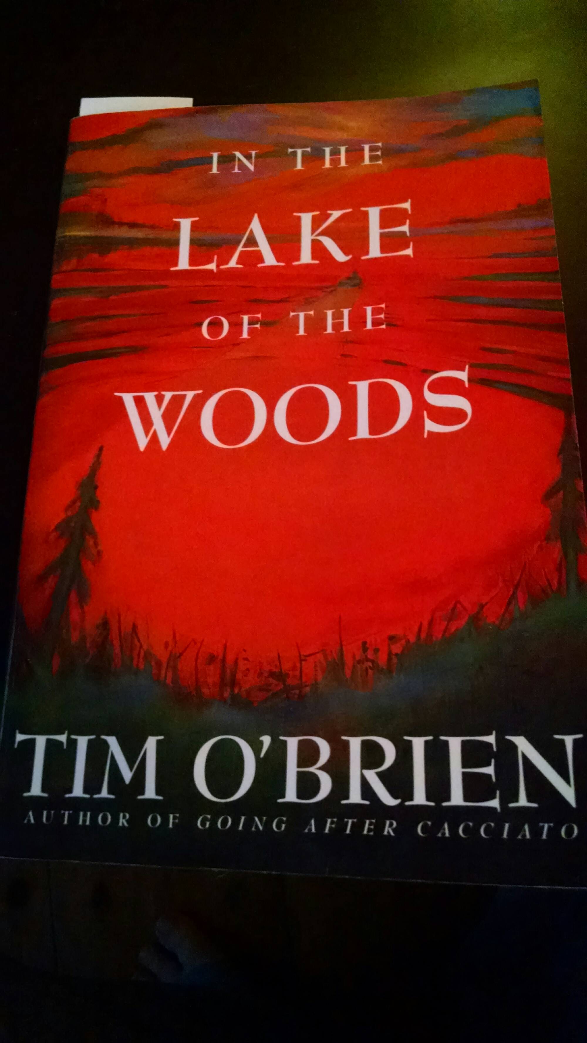 character analysis of john wade in the lake of the woods by tim obrien In the lake of the woods the main character, john wade in the lake of the woods by tim o'brien: theme analysis essay john wade started off his.